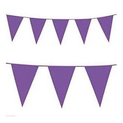 Purple Flag Bunting