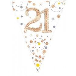 Sparkling Fizz Rose Gold 21st Birthday Flag Banner (3.9m)