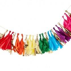 Over the Rainbow Tassel Garland