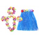 Hawaiin Skirts and Leis